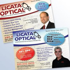 Licata Optical Flyer